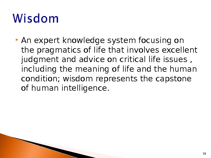 An expert knowledge system focusing on the pragmatics of life that involves excellent judgment and