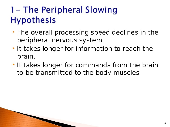 The overall processing speed declines in the peripheral nervous system.  It takes longer for