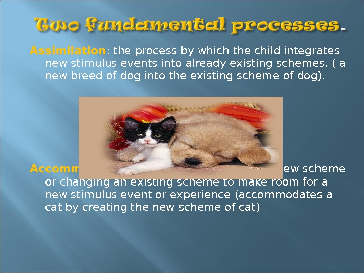 Assimilation : the process by which the child integrates new stimulus events into already existing schemes.