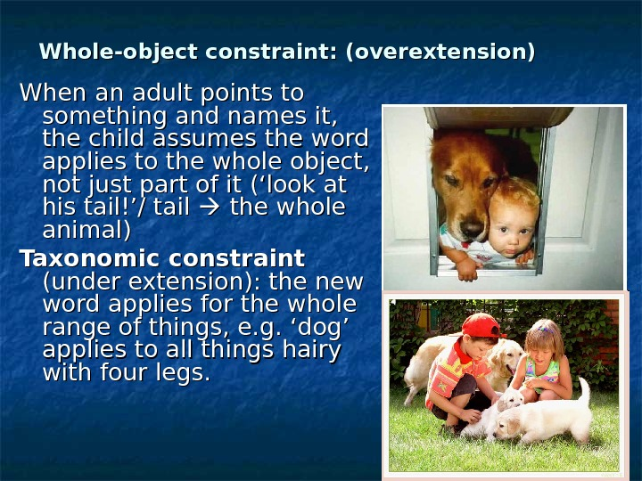 Whole-object constraint: (overextension) When an adult points to something and names it,  the child assumes