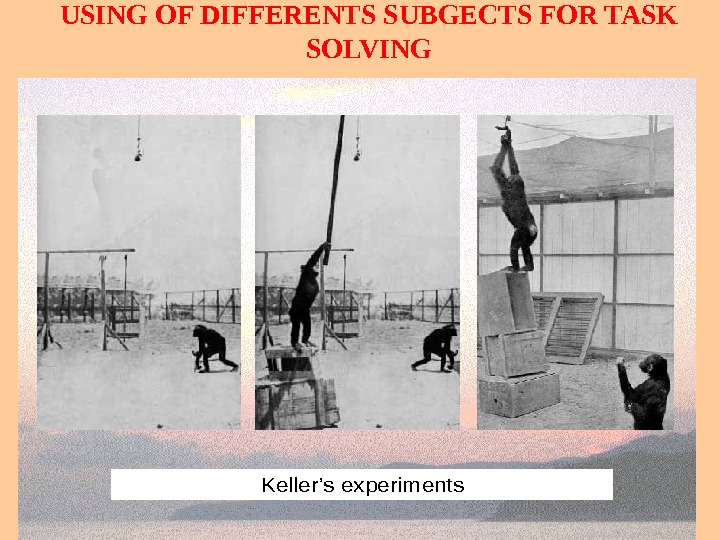 USING OF DIFFERENTS SUBGECTS FOR TASK SOLVINGKeller's experiments