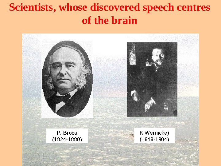 Scientists ,  whose discovered speech centres of the brain. P. Broca (1824 -1880) K. Wernicke)