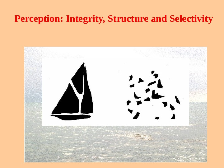 Perception: Integrity, Structure and Selectivity