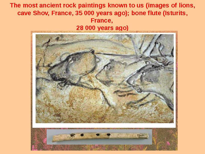 The most ancient rock paintings known to us (images of lions,  cave Shov, France, 35