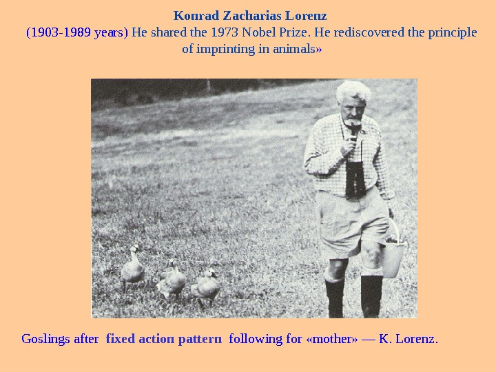 Konrad Zacharias Lorenz (1903 -1989 years) He shared the 1973 Nobel Prize. He rediscovered the principle