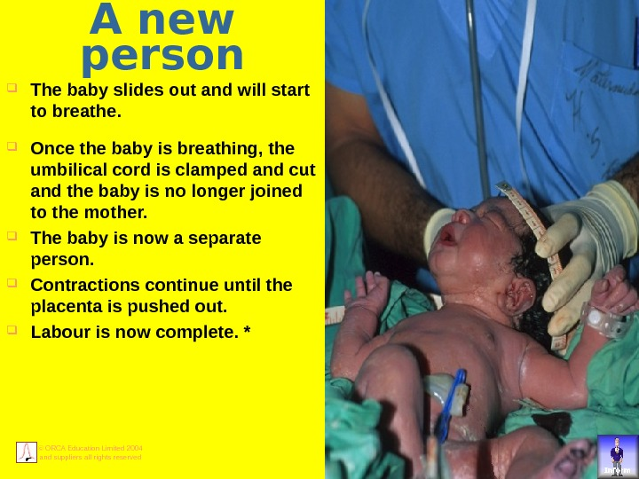 © ORCA Education Limited 2004 and suppliers all rights reserved A new person The baby slides