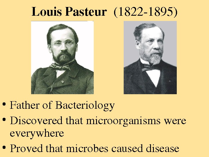 Louis. Pasteur (18221895) • Fatherof. Bacteriology • Discoveredthatmicroorganismswere everywhere • Provedthatmicrobescauseddisease