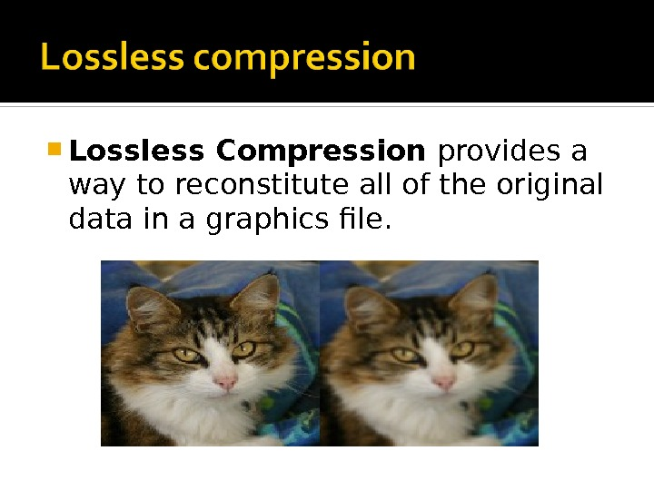 Lossless Compression provides a way to reconstitute all of the original data in a graphics