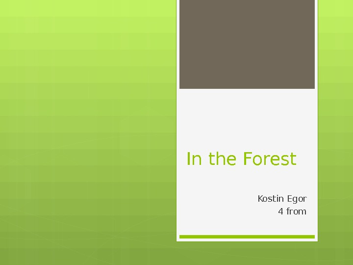 In the Forest Kostin Egor 4 from
