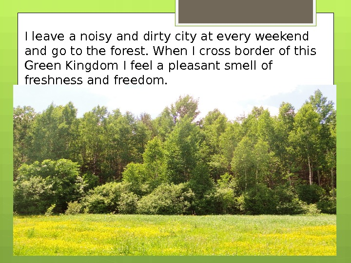 I leave a noisy and dirty city at every weekend and go to the forest. When