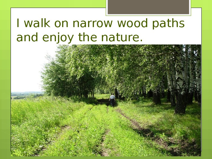 I walk on narrow wood paths and enjoy the nature.