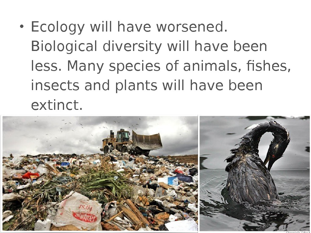 • Ecology will have worsened.  Biological diversity will have been less. Many species of