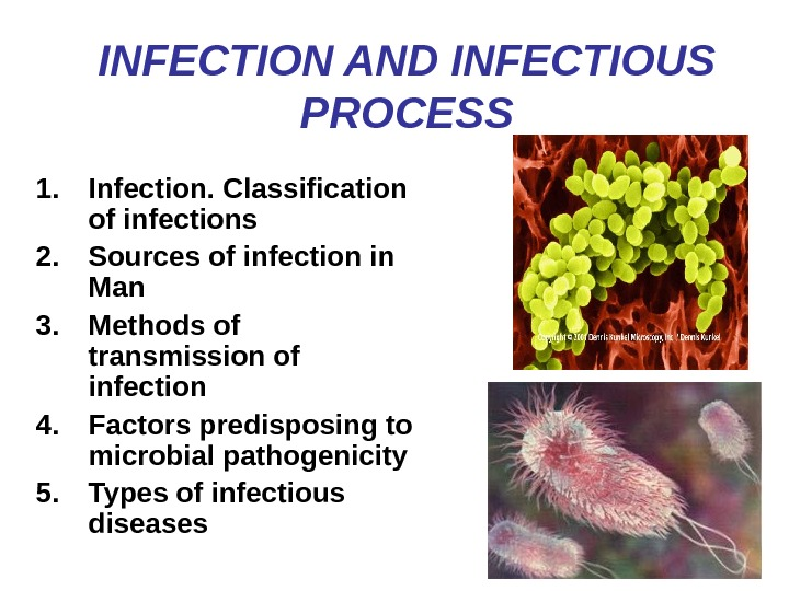 INFECTION AND INFECTIOUS PROCESS 1. Infection. Classification of infections 2. Sources of infection in