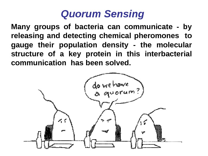 Quorum Sensing Many groups of bacteria can communicate - by releasing and detecting chemical