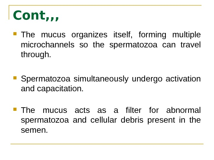 Cont, , ,  The mucus organizes itself,  forming multiple microchannels so the spermatozoa can