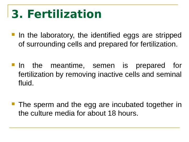3. Fertilization In the laboratory,  the identified eggs are stripped of surrounding cells and prepared
