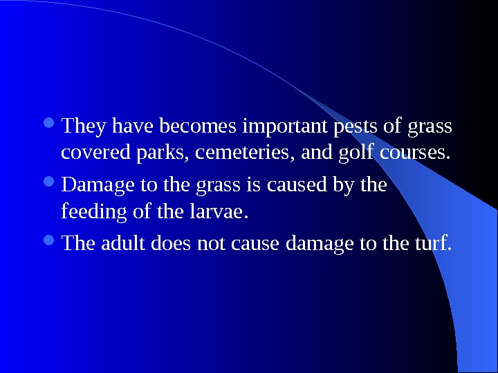 They have becomes important pests of grass covered parks, cemeteries, and golf courses.  Damage