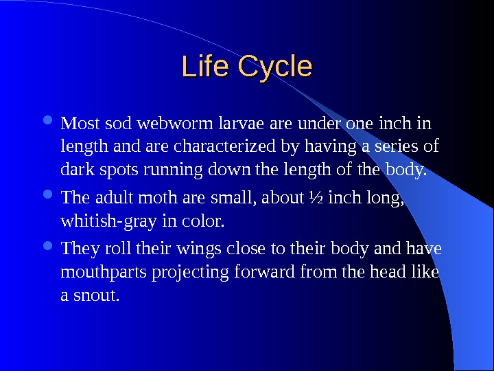 Life Cycle Most sod webworm larvae are under one inch in length and are characterized by