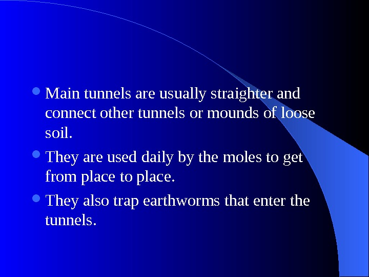 Main tunnels are usually straighter and connect other tunnels or mounds of loose soil.
