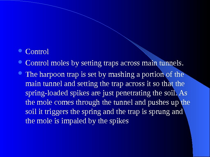 Control moles by setting traps across main tunnels.  The harpoon trap is set by