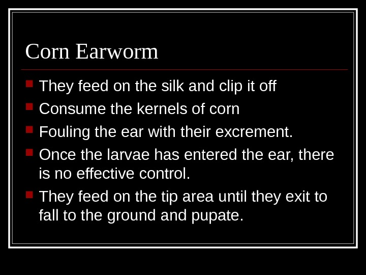 Corn Earworm They feed on the silk and clip it off Consume the kernels of corn