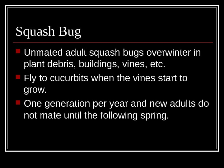 Squash Bug Unmated adult squash bugs overwinter in plant debris, buildings, vines, etc.  Fly to