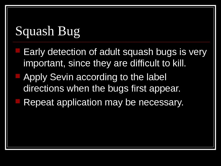 Squash Bug Early detection of adult squash bugs is very important, since they are difficult to