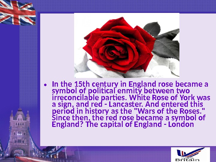 • In the 15 th century in England rose became a symbol of political enmity