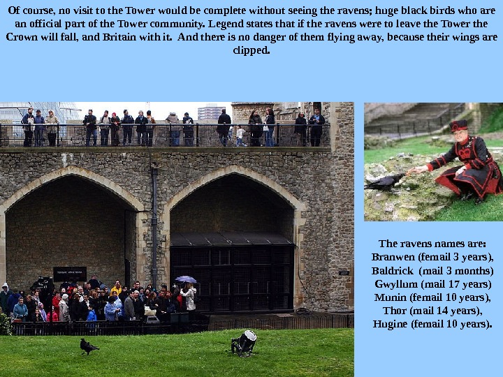 Of course, no visit to the Tower would be complete without seeing the ravens; huge black