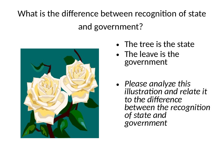 What is the difference between recognition of state and government? • The tree is the state