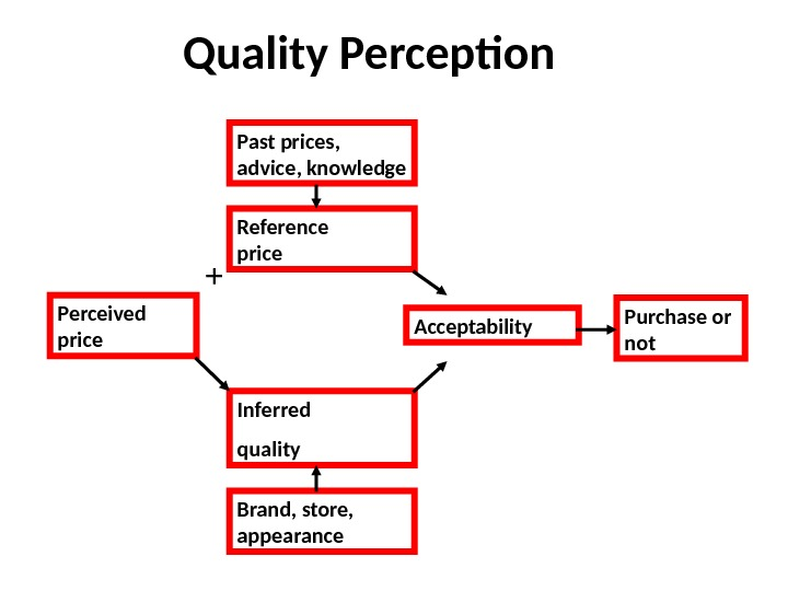 Quality Perception Perceived price Inferred quality. Reference price Acceptability Purchase or not. Past prices,