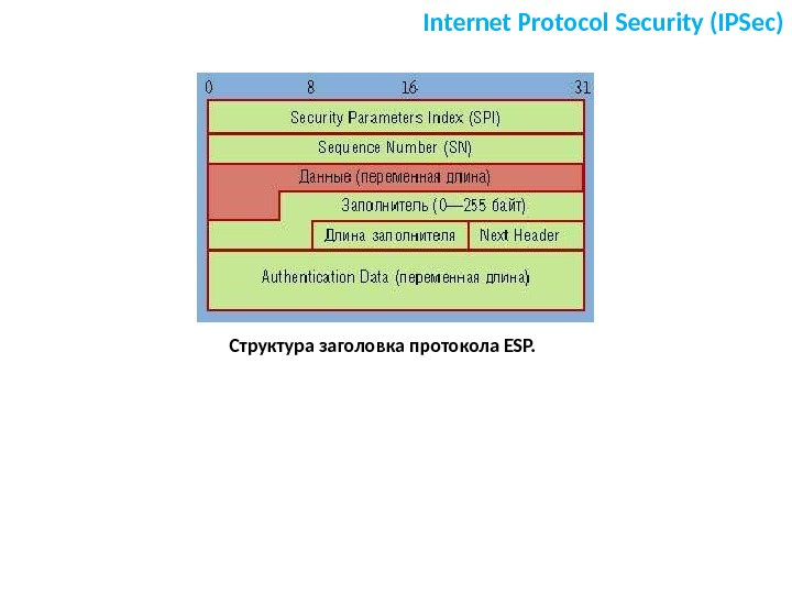 Internet Protocol Security (IPSec) Структура заголовка протокола ESP.