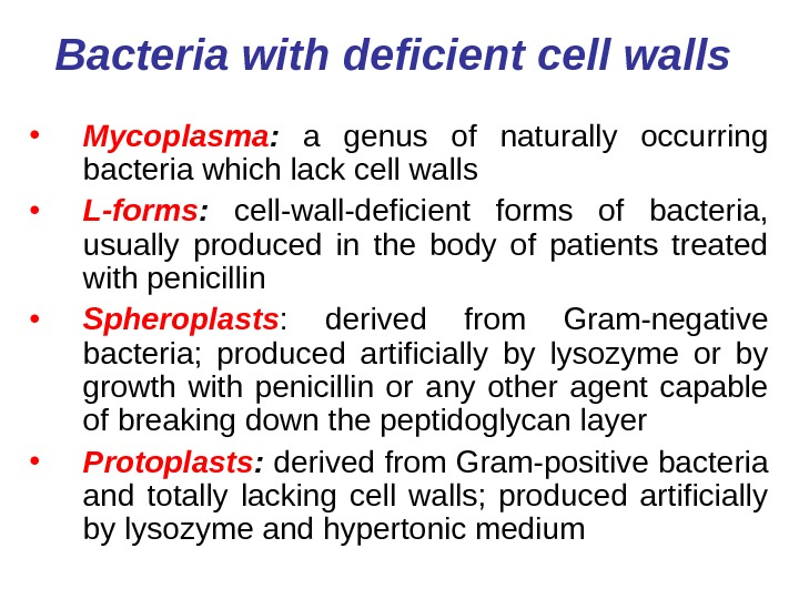 Bacteria with deficient cell walls  • Mycoplasma :  a genus of naturally