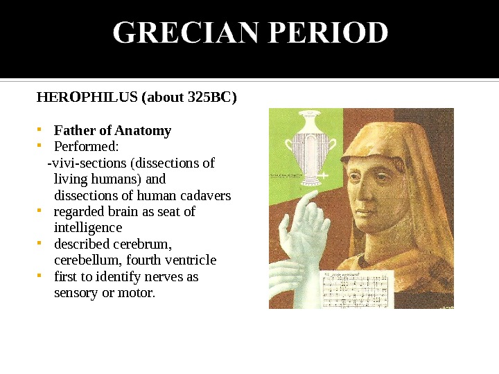 HEROPHILUS (about 325 BC) Father of Anatomy Performed:  -vivi-sections (dissections of living humans) and