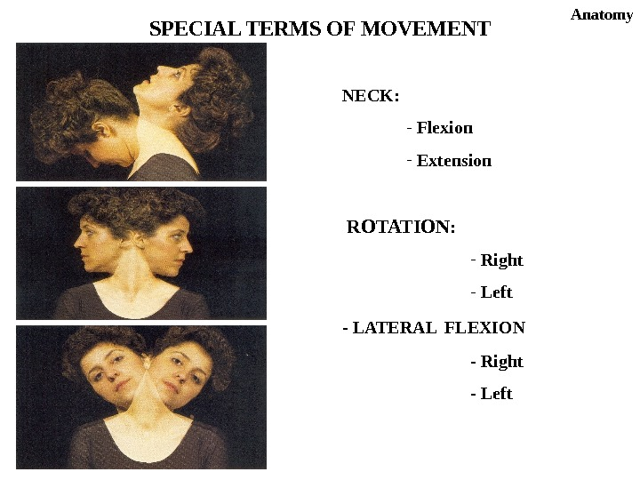 NECK: -  Flexion -  Extension  ROTATION : -  Right -  Left