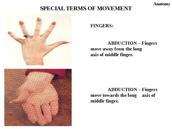 FINGERS: ABDUCTION – Fingers move away from the long axis of middle finger. ADDUCTION – Fingers