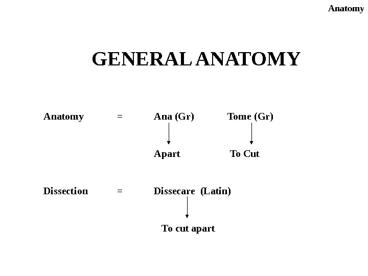 GENERAL ANATOMY Anatomy = Ana (Gr) Tome (Gr) Apart To Cut Dissection = Dissecare (Latin) To