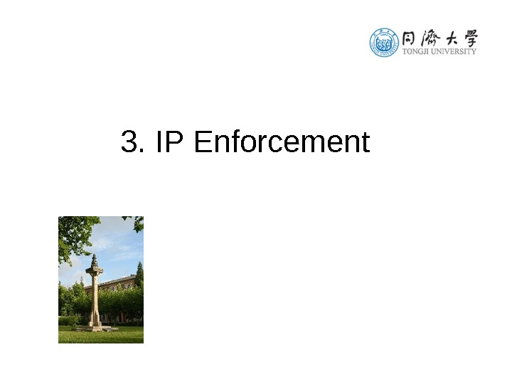 3. IP Enforcement