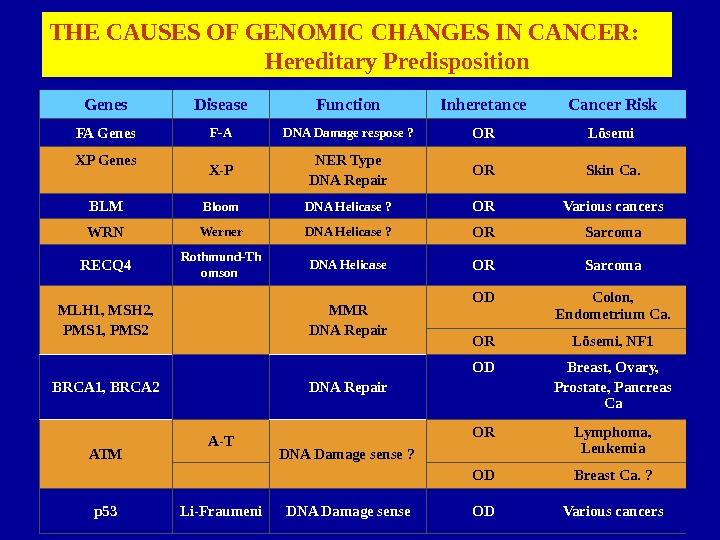 28 Genes Disease Function Inheretance Cancer Risk FA Genes F-A DNA Damage respose ? OR