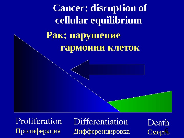6 Proliferation Пролиферация Differentiation Дифференцировка Death Смерть. Cancer: disruption of cellular equilibrium  Рак: нарушение
