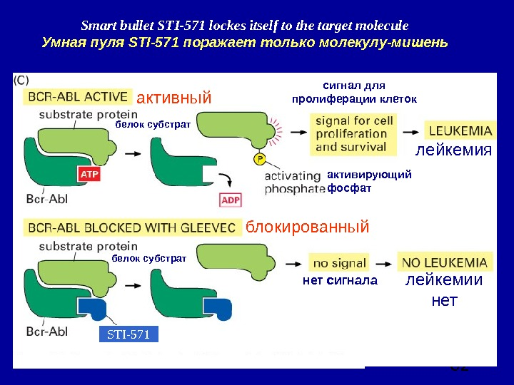 62 Smart bullet STI-571 lockes itself to the target molecule Умная пуля STI-571 поражает только