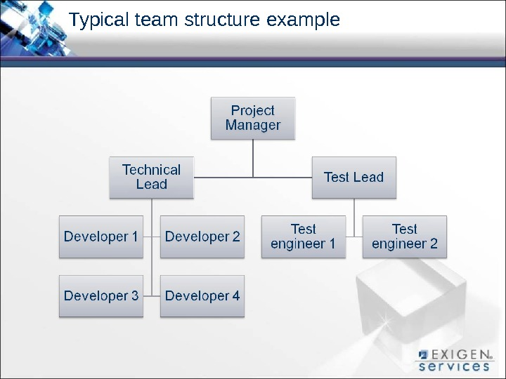 Typical team structure example