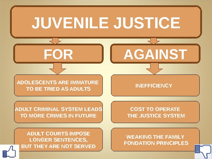 JUVENILE JUSTICE AGAINST INEFFICIENCY COST TO OPERATE  THE JUSTICE SYSTEM WEAKING THE FAMILY  FONDATION