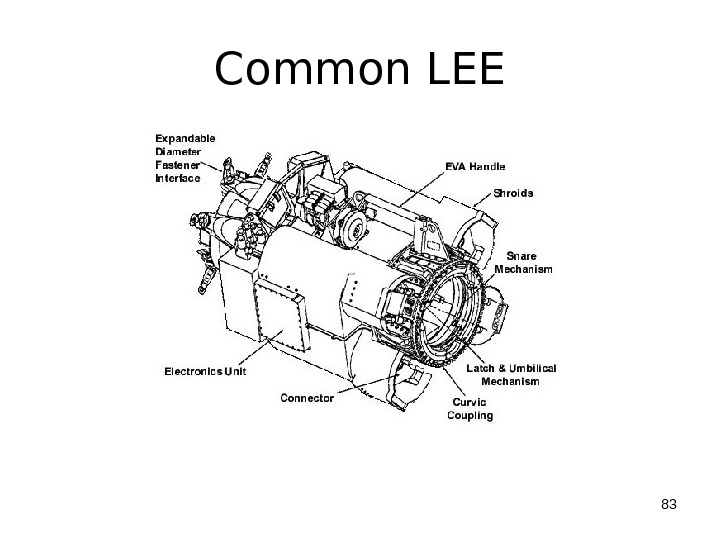 Common LEE 83
