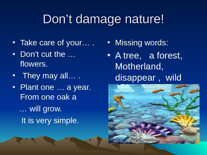 Don't damage nature! • Take care of your….  • Don't cut the … flowers.