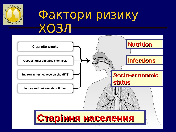 Фактори ризику ХОЗЛ Nutrition Infections Socio-economic status Старіння населення