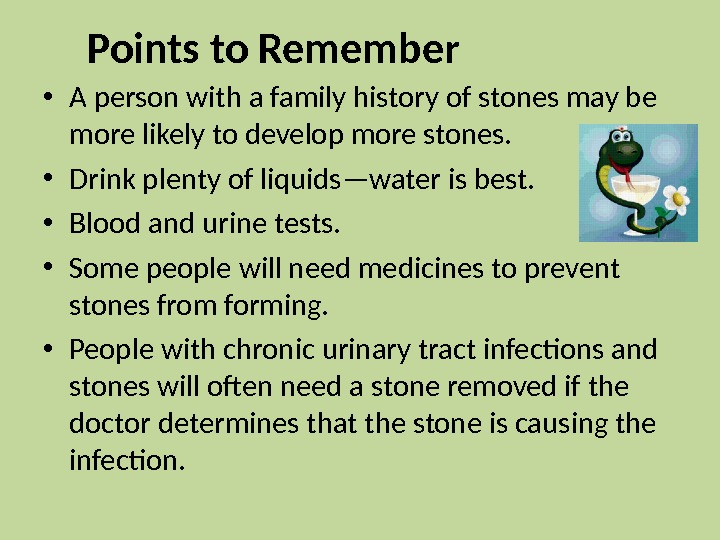 Points to Remember • A person with a family history of stones may be more likely