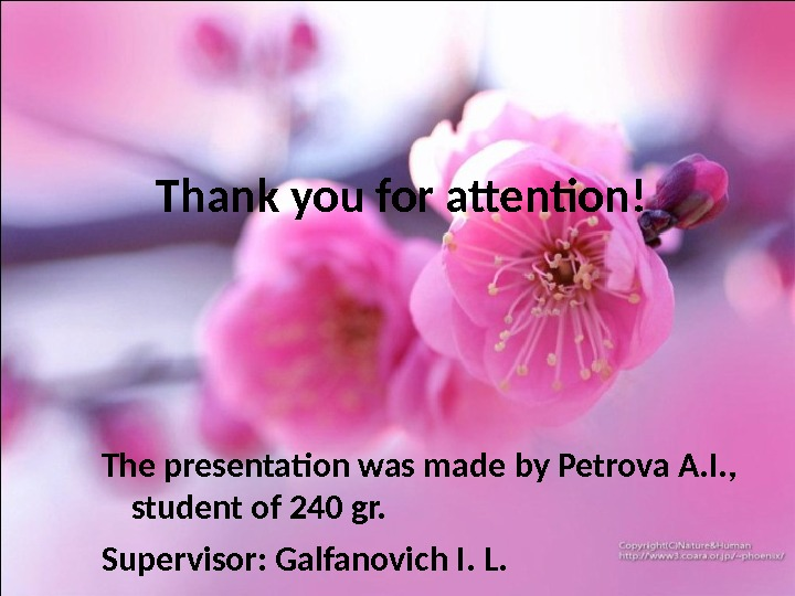 Thank you for attention! The presentation was made by Petrova A. I. ,  student of