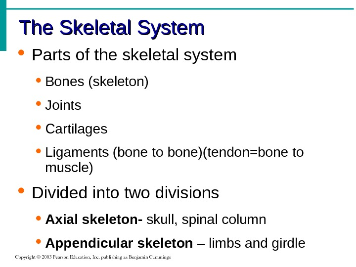 The Skeletal System Copyright© 2003 Pearson. Education, Inc. publishingas. Benjamin. Cummings Parts of the skeletal system