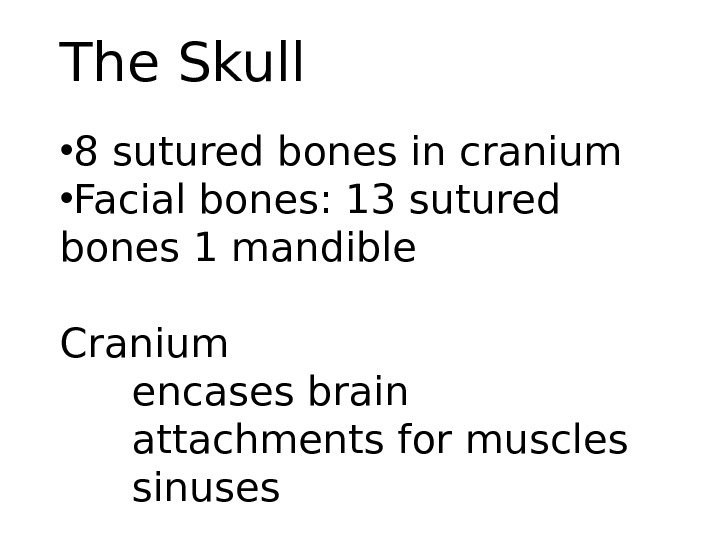 The Skull • 8 sutured bones in cranium • Facial bones: 13 sutured bones 1 mandible